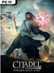 Citadel: Forged with Fire [v 28720] (2019) PC | RePack от SpaceX