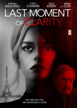 Момент истины / Last Moment of Clarity (2020) WEB-DLRip | A
