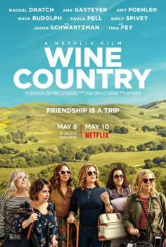 Винная страна / Wine Country (2019) WEB-DL 720р | D | Невафильм